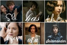 Newtina Fantastic Beasts And Where, Harry Potter Universal, Otp, Universe, Ships, It Cast, Fandoms, Board, Movie Posters