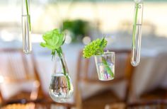 Hanging centerpieces. A great alternative to tall, bulky centerpieces that end up being moved so people can see each other and talk.  // By: Canards Catering and Event Production // canardscatering.com