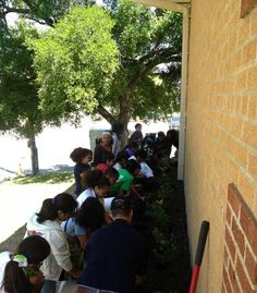 Planting flowers with the kids from Como Elementary in Ft. Worth, Texas. It's all about the Earth (Day).