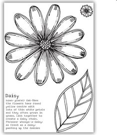 Julie Hickey Designs - Delightful Daisy Stamp Set JH1042 - Julie Hickey - HixxySoft £8.99 Arts And Crafts, Paper Crafts, Daisy Chain, Simon Says Stamp, Flower Images, Clear Stamps, Craft Stores, Ink, Crafty