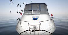 Repeller Uses Wind Power to Prevent Birds from Landing Wind Power, Landing, Boat, Birds, Dinghy, Boats, Bird, Birdwatching, Ship