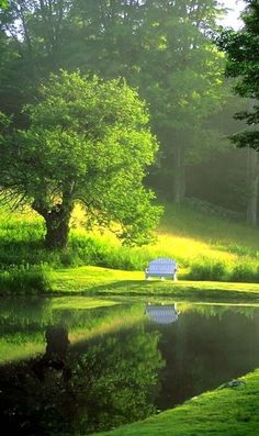 Lake Bench ~ Burgundy, France, I can have a coffee break here.