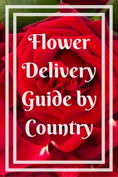 Flower Delivery Guide by Country
