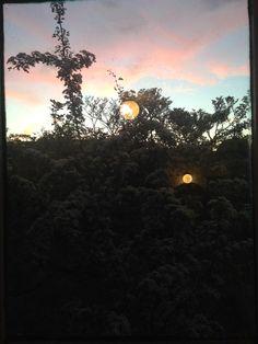 Esmée van Steen Celestial, Sunset, Outdoor, Sunsets, Outdoors, The Great Outdoors, The Sunset