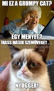 "Képtalálat a következőre: ""grumpy cat magyarul felirattal"" Funny Cat Memes, Funny Cats, Hilarious, Grumpy Cats, Memes Humor, Video Games For Kids, Kids Videos, Fat Animals, Scary Movies"