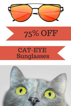 OMGGGG!!! Hot Sale!!! Cat-Eyes Sunglasses - Polarized - UV400 are back in stock! Limited supply available! Comes in many different colors! Order now and get 75% off plus FREE shipping!