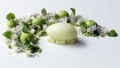 Green apple and lime sorbet with shiso, avocado and eucalyptus