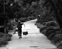 Longjing by Alfonso Lucifredi on 500px