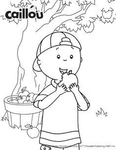 Coloriage Caillou – Cueillette de pommes