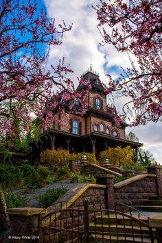 #lieberDschinni Ich wünsche mir einen Blick hinter die Kulissen von Phantom Manor, dem Geisterhaus in Disneyland Paris. Ich möchte so gerne einmal unten im Ballsaal stehen und mir all die Geheimnisse zeigen lassen, die man sonst nie sieht.