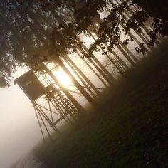 Sonnenaufgang im Revier #jagd #jakt #jagen #Jäger #Hunter #hunting #revier #revier #reh #rehbock #rehwild #wald #wmh #wild #Wildsau #sonnenaufgang #blaserr8 #blaserwaffen #blaserr8 #zeiss #nebel by schwobajaeger_