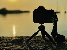 """I like this picture - I captioned it """"Happiness is......"""" - my Canon 6D looking at something very nice"""