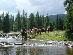 .Horseback riding. McCainAllGood