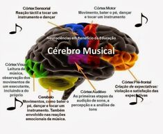 432 Hz – A Frequência Que Cura | Brasília Nova Era Oliver Sacks, Self Help Skills, Elementary Music Lessons, Medical Memes, Psychology Studies, Study Planner, Book Organization, All About Music, My College