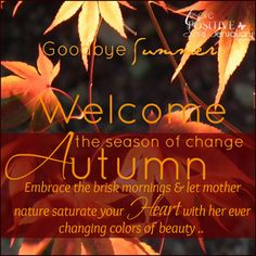 Goodbye Summer, Welcome Autumn. Fall Pictures, Fall Photos, Fall Pics, Seasons Of The Year, Months In A Year, The Embrace, Autumn Scenes, Autumn Cozy, Autumn Harvest