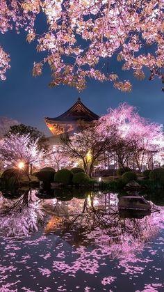 Fantasy Art Landscapes, Fantasy Landscape, Beautiful Landscapes, Aesthetic Japan, Nature Aesthetic, Anime Scenery Wallpaper, Wallpaper Backgrounds, City Wallpaper, Iphone Wallpaper Japan