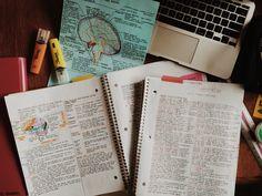 Pretty notes - hannahreveur | studyblr