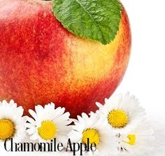 CHAMOMILE APPLE Fragrance Oil | Buy Wholesale at Just Scent Candle and Soap Supplies | Fragrance Oils