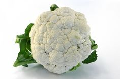 How to Make a Cauliflower Brain Model
