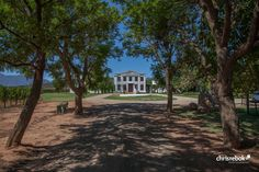 De Wetshof, Robertson, South Africa #southafrica #robertson #wine #chrisrebok