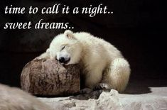 Time to call it a night goodnight good night goodnight quotes goodnight quote goodnite