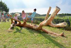 Zelfs een eenvoudige boom biedt speelkansen