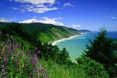 The Lost Coast, California. I've been obsessed with hiking the Lost Coast for the past year. Hopefully I can do it soon.