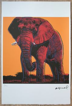 African Elephant, Andy Warhol, Art For Sale, Pop Art, Leo, Israel, Signs, Wall Art, Gallery