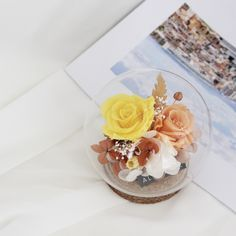 Dried Flower Bouquet, Rose Bouquet, Fresh Flowers, Dried Flowers, Flowers Last Longer, The Bell Jar, How To Preserve Flowers, Quilling Art, Message Card
