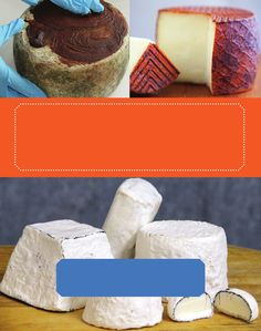 Making Rindless Blue Cheese - An Excerpt from Mastering Artisan Cheesemaking