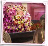 Oktober: maand van de chrysant