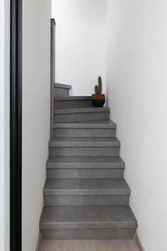 Stoere industriële Betonlook trap in hal Stairs, Home Decor, Stairway, Decoration Home, Staircases, Room Decor, Ladders, Interior Decorating, Ladder