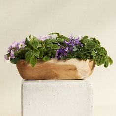 Carved Teak Oval Planter