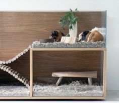 PET INTERIORS - DESIGN FOR GUINEA PIGS & CO.