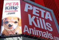 PETA Steals and Kills Family Dog Read about all the animals PETA kills!  NEVER GIVE THEM A DIME ! http://moonbattery.com/?p=65854