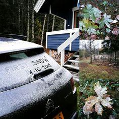 De eerste sneeuw voor winter 2016-2017 bij de stuga Blå Pärla