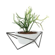 Tabletop planter by KKDW from Texas