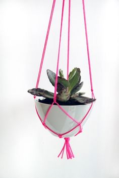 DIY Hanging Planter | Shelterness