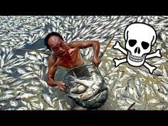 20 Signs China's Pollution Has Reached Apocalyptic Levels | China Uncensored - YouTube