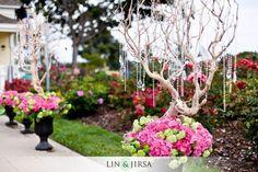 Manzanita Trees - Altar / Wishing Tree / Place card