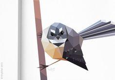 Nieuw-Zeeland vogel Fantail schilderij geometrische poster
