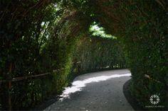 "Entrada al ""Laberinto de los sentidos"" en Jardines de México  Morelos, México. #paisajismo #landscaping  #Turismo #Tourism #Naturaleza #Nature #JardinesDeMéxico.  http://jardinesdemexico.org"
