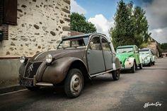 Rat, Antique Cars, Classic Cars, Picture Wall, Souvenir, Automobile, Nostalgia, Vintage Cars, Vintage Classic Cars