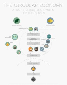 An Introduction to The Circular Economy Waste Reduction Model Infographic