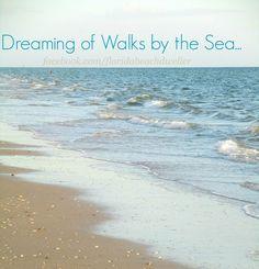 Via Florida Beach Dweller... https://www.facebook.com/floridabeachdweller/photos/a.531535356996874.1073741828.531330783683998/676965469120528/?type=3&theater
