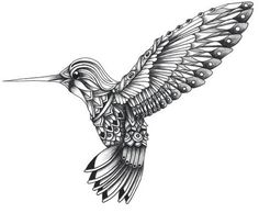 Imagen de drawing, art, and bird