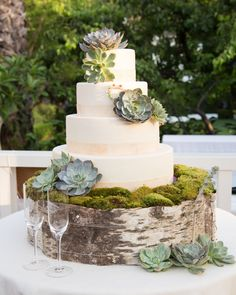 Perfection #cake #birch #succulents | Los Angeles Wedding from JOWY Productions  Read more - http://www.stylemepretty.com/california-weddings/2013/11/01/los-angeles-wedding-from-jowy-productions/