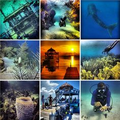 Best Dive Sites in Central America and Mexico http://beyondblighty.com/best-dive-sites-in-central-america-and-mexico/