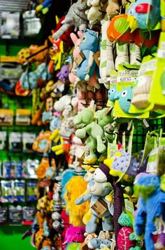 Some of the toys in our newly expanded space! #fortheloveofdogs