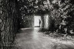 The way out by HansTibben Fine Art Photography #InfluentialLime